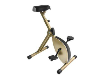 desk bike